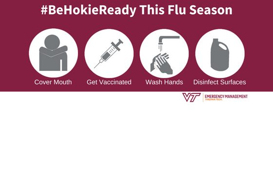 Fighting the Flu Graphic