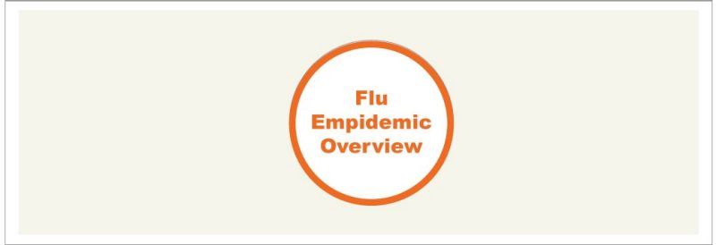 Flu Overview Icon Large