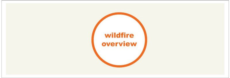wildfire overview